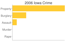 Iowa Criminal Activity Breakdown