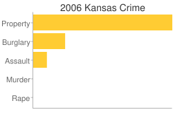 Kansas Criminal Activity Breakdown
