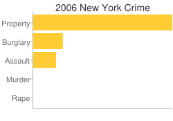 New York Criminal Activity Breakdown