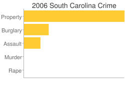 South Carolina Criminal Activity Breakdown