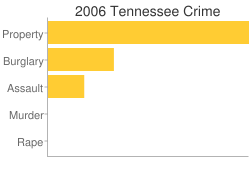Tennessee Criminal Activity Breakdown