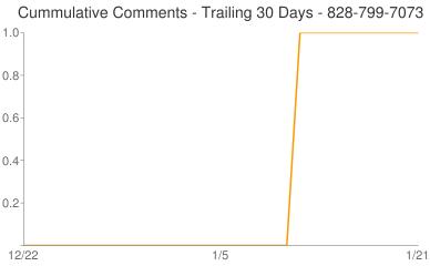 Cummulative Comments 828-799-7073