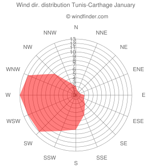 Wind direction distribution Tunis-Carthage January