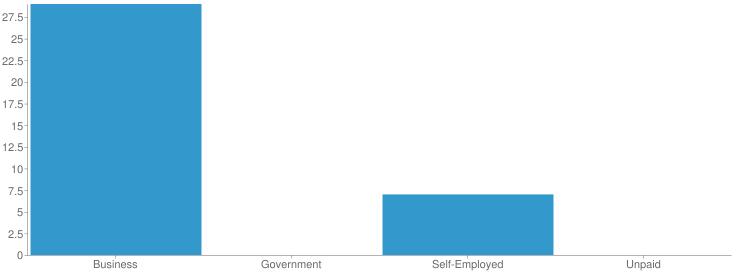 Employment Type Chart