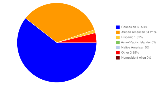 Breakdown of Student Population by Ethnicity