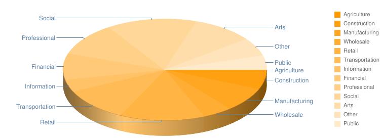 Industry Pie Chart