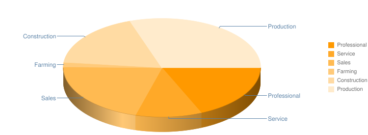 Occupation Pie Chart