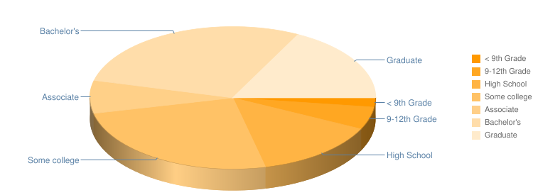School Education Level Pie Chart