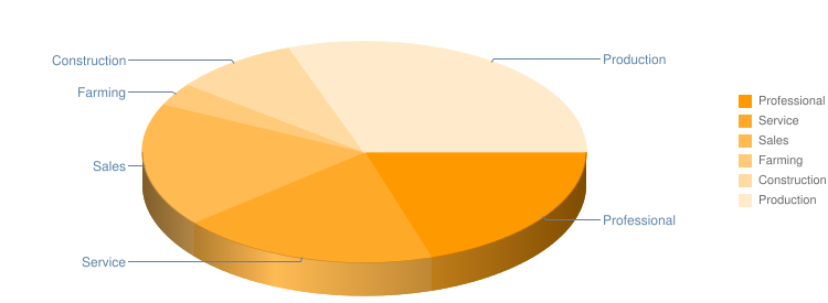 Occupation Pie Chart