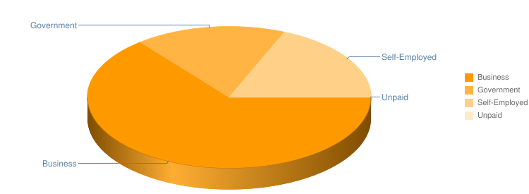 Employment Type Pie Chart