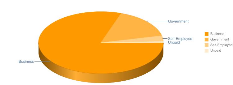 Employment Type Pie Chart