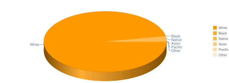 Racial Profile Pie Chart