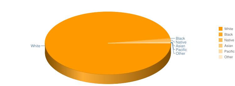 Racial Profile Pie Chart