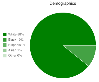 Christiansburg Middle Demographics