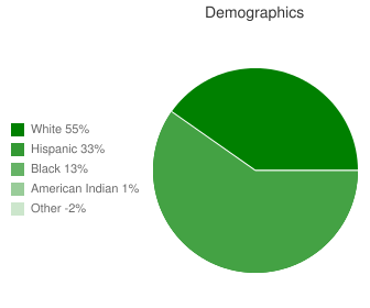 Hollis High School Demographics