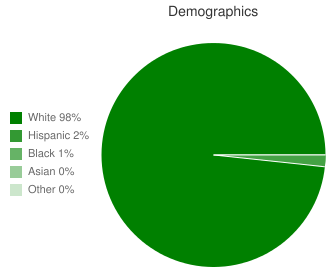 Russell County High School Demographics