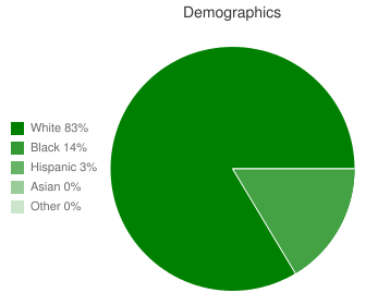 Rockingham County High Demographics