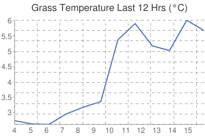 Leicester Weather Grass Temperature