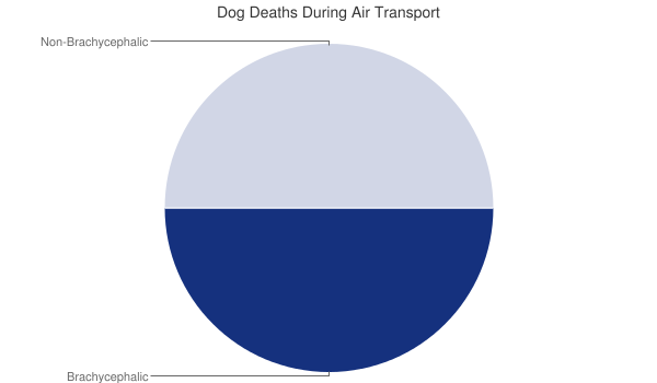 Brachycephalic (Short-Nose<d) Dog Deaths During Air Travel. Current as of August 2021.