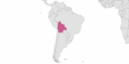 Envoi de SMS Bolivie