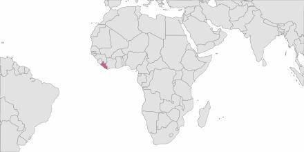 SMS sending Liberia