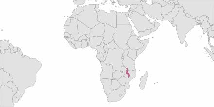 Envoi de SMS Malawi