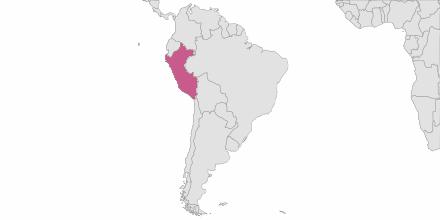 Envoi de SMS Pérou
