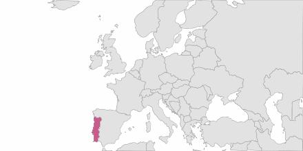 SMS sending Portugal