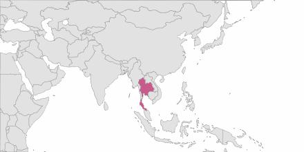 Envoi de SMS Thaïlande