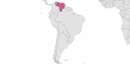 SMS sending Venezuela