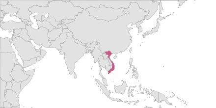 SMS sending Vietnam
