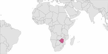 Envoi de SMS Zimbabwe