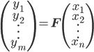 \begin{eqnarray} \begin{pmatrix} y_{1} \\ y_{2} \\ \vdots \\ y_{m} \end{pmatrix} = \mathbf{F} \begin{pmatrix} x_{1} \\ x_{2} \\ \vdots \\ x_{n} \end{pmatrix} \end{eqnarray}