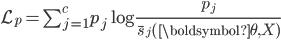 \mathcal{L}_{p}=\sum_{j=1}^{c} p_{j} \log \frac{p_{j}}{\overline{s}_{j}(\boldsymbol{\theta}, X)}