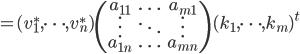= (v^*_1, \cdots, v^*_n) \begin{pmatrix}a_{11}&\ldots&a_{m1}\\ \vdots&\ddots&\vdots\\ a_{1n}&\ldots&a_{mn}\end{pmatrix}(k_1, \cdots, k_m)^t