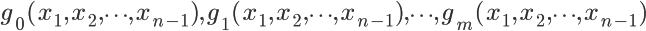 \LARGE g_{0}(x_{1},x_{2}, \cdots ,x_{n-1}),g_{1}(x_{1},x_{2}, \cdots ,x_{n-1}), \cdots ,g_{m}(x_{1},x_{2}, \cdots ,x_{n-1})