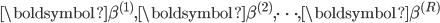 \boldsymbol{\beta}^{(1)}, \boldsymbol{\beta}^{(2)}, \cdots , \boldsymbol{\beta}^{(R)}