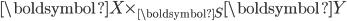 \boldsymbol{X} \times_{\boldsymbol{S}} \boldsymbol{Y}