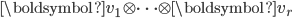 \boldsymbol{v} _1 \otimes \cdots \otimes \boldsymbol{v} _r