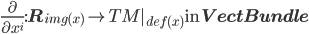 \frac{\partial}{\partial x^i} : {\bf R}_{img(x)} \to TM _{def(x)} \:\mbox{in}\: {\bf VectBundle}
