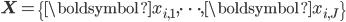 \mathbf{X}=\{\boldsymbol{x}_{i,1},\cdots,\boldsymbol{x}_{i,J}\}