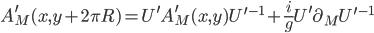 {A^{\prime}_M(x,y + 2\pi R) = U^{\prime}A^{\prime}_M(x,y)U^{\prime -1} + \frac{i}{g}U^{\prime}\partial_MU^{\prime -1}}