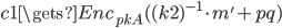 {c1 \gets Enc_{pkA}((k2)^{-1} \cdot m' + pq)}