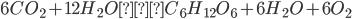 6CO_{2} + 12H_{2}O → C_{6}H_{12}O_{6} + 6H_{2}O + 6O_{2}