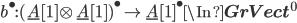 b^\bullet : (\underline{A}[1]\otimes \underline{A}[1])^\bullet \to \underline{A}[1]^\bullet \In {\bf GrVect}^0