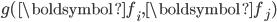 g(\boldsymbol{f_i}, \boldsymbol{f_j})
