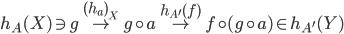 h_{A}(X) \ni g \stackrel{ (h_a)_X }{\mapsto} g \circ a \stackrel{ h_{A'}(f) }{\mapsto} f \circ (g \circ a) \in h_{A'}(Y)
