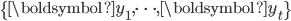 \{\boldsymbol{y}_{1},\cdots,\boldsymbol{y}_{t}\}