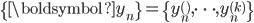 \{\boldsymbol{y}_n\}=\{y_n^{()},\cdots,y_n^{(k)}\}