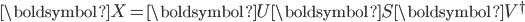 \boldsymbol{X}=\boldsymbol{U}\boldsymbol{S}\boldsymbol{V}^\dagger